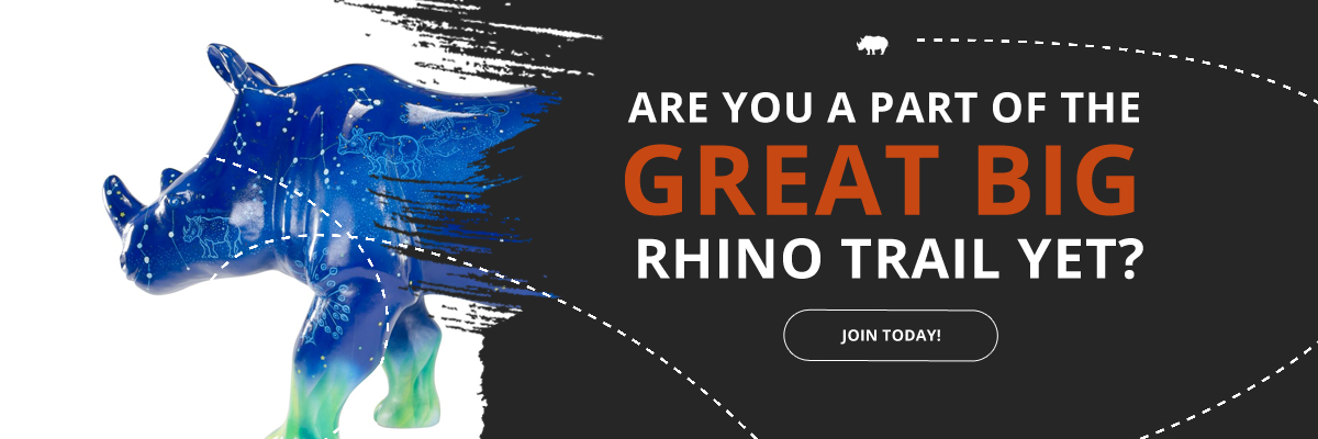 Join the great Big Rhino Trail!